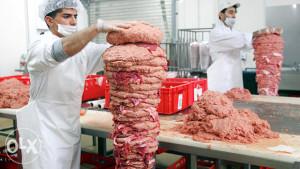 Doner meso/kebab/doner juneci/doner pileci