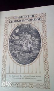 Knjiga Zena kao kucni lijecnik 1911 dr Ana Fiser