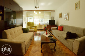 Comfortable 1BDR apartment in city center for rent