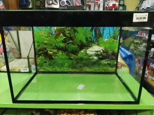 Četverougli akvarijum za ribice 30l 42x25x29