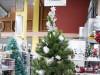 Ponuda Božićno drvce / jelka smreka