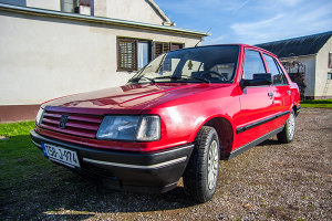 Peugeot 309 1.9D