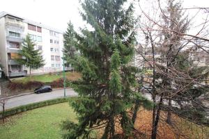 Dvoiposoban stan - Centar - Koševsko brdo