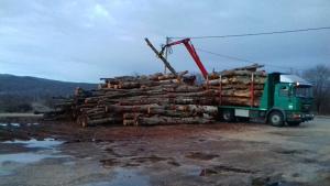 Ogrijevno drvo - Veće količine u trupcima | ogrev