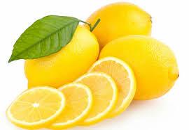 sadnice kalemljenog limuna