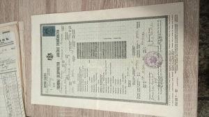 Stari dokument svjedočanstvo iz 1938 Kraljevina Jugosla