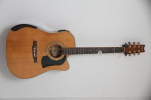 ozvucena gitara