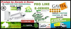 GAVITA Pro 1000
