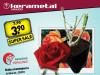 Ruža u kontejneru