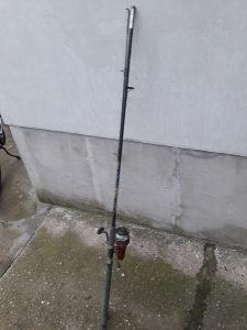 Stapovi ribolov