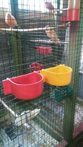 Hranilice za ptice