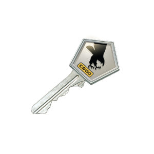 Clutch Case Key ( STEAM CSGO CS GO )