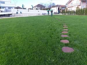 Uredjenje i odrzavanje zelenih povrsina - dvorista