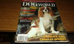 Dog World - Juni 1996.