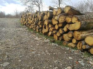 Drva( Hrastova) 5 metara