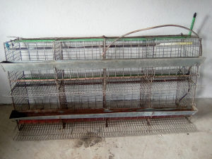 Kavez za koke nosilice