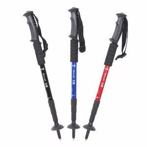 Štap za planinarenje