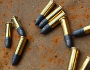 Malokalibarska municija 22 lr