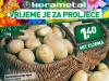 Sjemenski krompir Agria