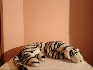 Plisana igracka Tigar