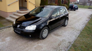 Volkswagen Golf V / 1.4 Benzin / 065 996 732