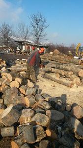 Posao - rezanje drva Sarajevo