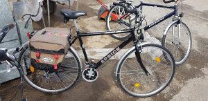 Bickl gradsko biciklo passat