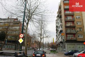 MY SPACE/ Salonski stan/ Centar/ Danijela Ozme/ 119 m2