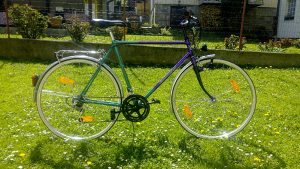 Bicikl EUROTEAM STRADA, NOV, NAJPOVOLJNIJE