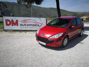 Peugeot 307 1.6 HDi Grand Filou Cool