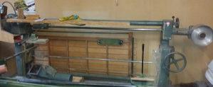 Tracna slajferica stolarska