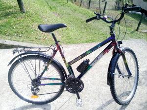 Tecno bike 26-ica