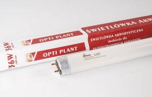 Diversa Opti Plants T8 36W
