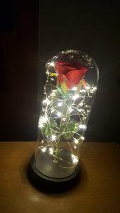 Ruža pod staklenim zvonom