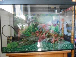 Akvarijum sa kompletnom opremom