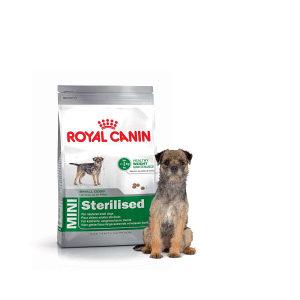Hrana za pse Royal Canin Mini Sterilised