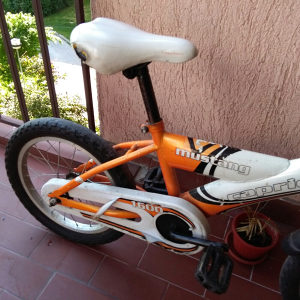 """Djeciji bicikl Capriolo 16"""""""