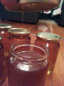 Pcelinji med