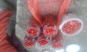 Sumske jagode