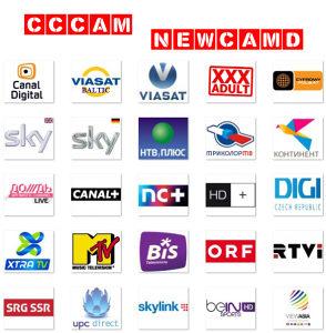 Cardsharing stabilnost 24/7 MAXTV
