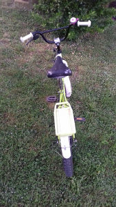 Biciklo dijecije