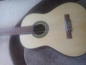 MSA M22 Gitara , Gitarre