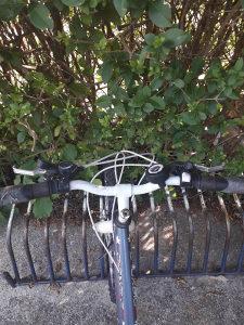 Capriolo Diavolo Bicikl