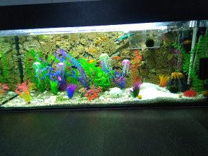 Prodajem akvarij 220l