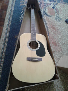 Gitara Jay TT 45-N nova