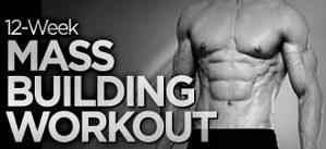 12-Week Mass and Power Training Workout Program-DVD