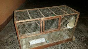 Letač za ptice poklon kavez dalmatinac