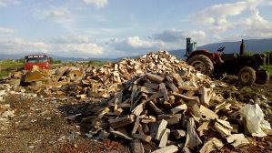 Bukova drva,bukovi ogrjev,cijepana drva,isjepana bukova