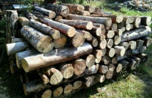 Drva Jelova