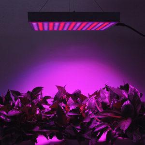 Erligpowht LED panel za uzgoj biljaka 45W
